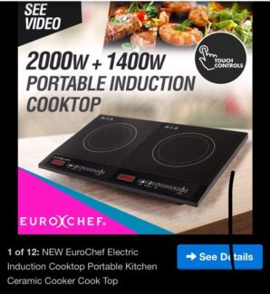 Portable electric induction cooker