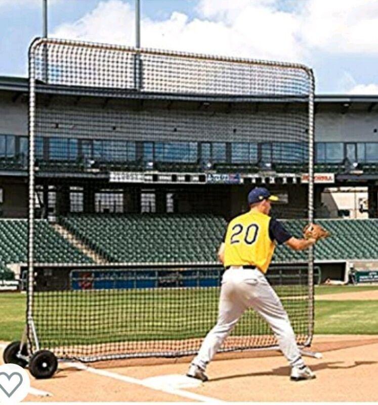 Baseball Net 8