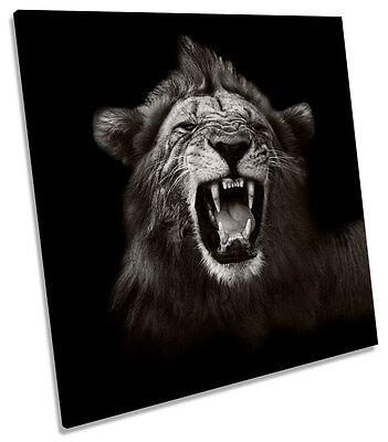 (Lion Roar Mono B&W CANVAS WALL ART SQUARE Picture Print)