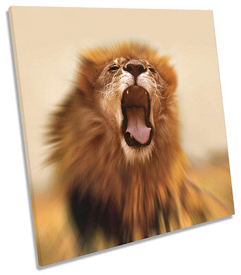 Lion Roar Safari CANVAS WALL ART SQUARE Picture Print