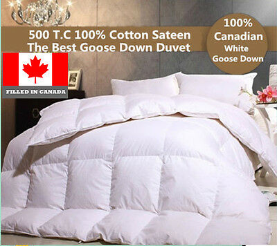 THE BEST CANADIAN WHITE  GOOSE DOWN DUVET COMFORTER  725 LOFT  FILLED IN