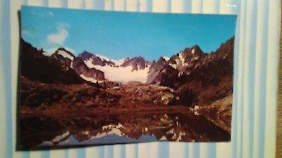 AMAZING PHOTO POST CARD!  QUEETS BASIN & MT OLYMPUS WASHINGTON