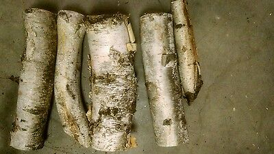 lOT OF BIRCH LOGS decoration, crafts etc FALL WINTER DECOR CHRISTMAS FIRE PLACE