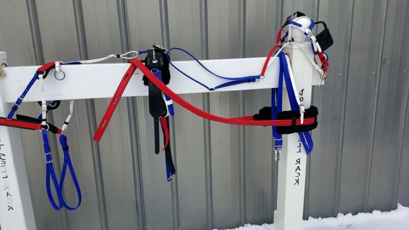 Red White Blue Amish made beta mini miniature horse drawn harness NEW COMPLETE