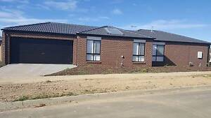 New Room in New house for rent with full furnished just $250/week Ballarat Central Ballarat City Preview