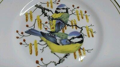 Elizabethan Staffordshire Plate Hand decorated BLUE TITS on bone china