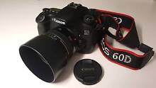 Canon EOS 60d DSLR + Canon EF 50mm f/1.4 USM + ES-71 II Lens Hood Kingsford Eastern Suburbs Preview
