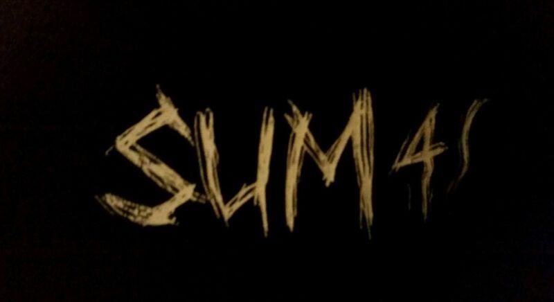 Sum 41 Canadian Post Punk Group TSHIRT Child M 10-12