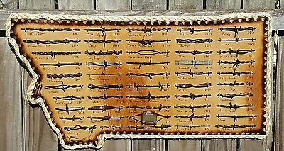 Montana Antique Barbed Wire Display 50 cut's Authentic Old West Barbwire