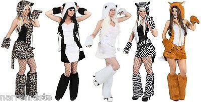 Eisbär Katzen Panda Bär Damen Kostüm Katze Katzenkostüm - Zebra Sexy Kostüme