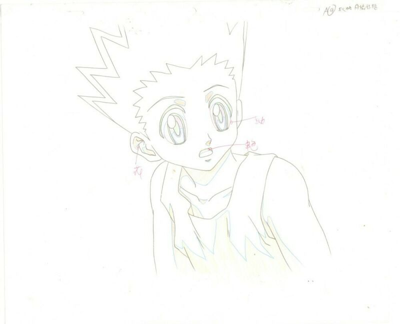 Anime Genga not Cel Hunter x Hunter 2 pages #191