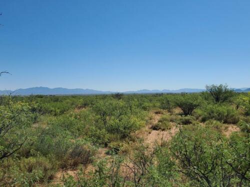 0.89 acre lot in Sunsites, AZ (Cochise County) - Cash or finance