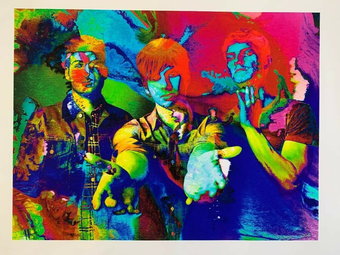 Foster The People - Giclee Art Print By Murray Eisner, Limited Edition, 18x24 - $45.00