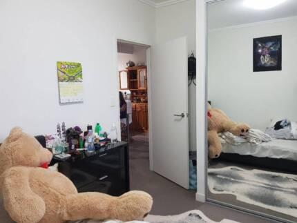 A sunny room with own bathroom in Waitara/Hornsby (single/couple)