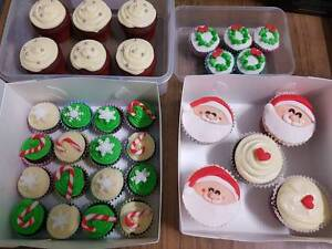 Decorated Cupcakes for any Party, Birthday, Function, Event Strathfield Strathfield Area Preview