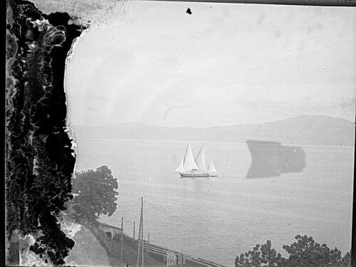 Photo plaque de verre négatif 1905 barque à voile  sur le lac leman