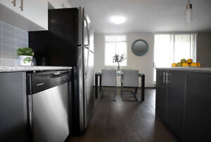 2 Bdrm- Renovated and Pet Friendly in Hamilton!