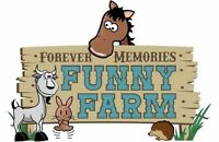 Mobile Pony Rides & Petting Farm