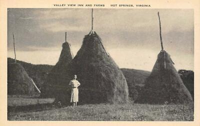 Valley View Inn And Farms, Hot Springs, Virginia c1920s Vintage Postcard