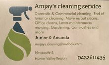 Amjay's cleaning service! Aberglasslyn Maitland Area Preview