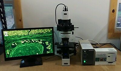 Olympus Microscope Bx60 Fluorescence With Hd Camera