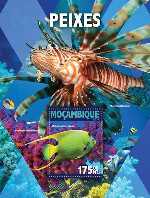 Mozambique 2016 MNH Fish 1v S/S Fishes Marine Stamps