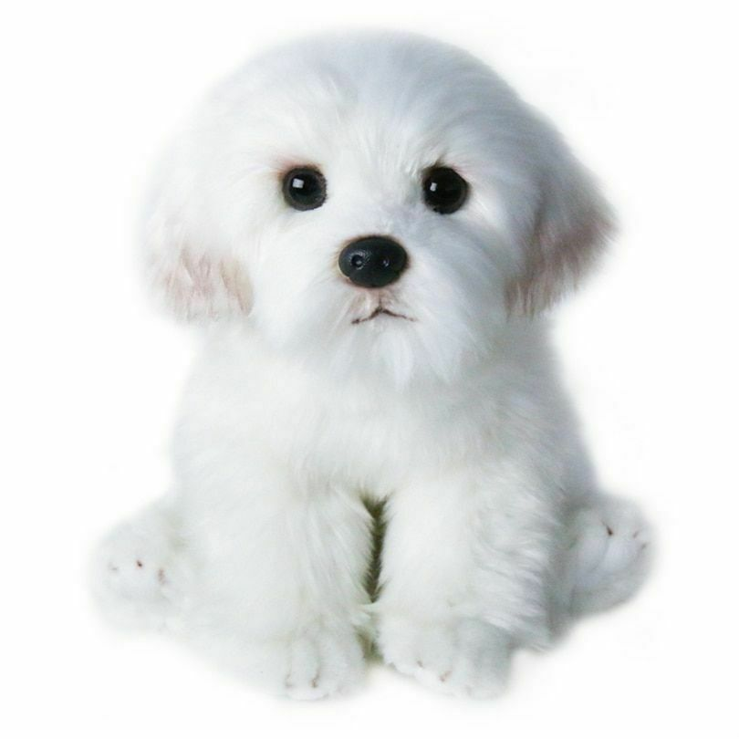 Bichon Frise Plush Toy Puppy Stuffed Animal Dog Cute Simulation Pets Fluffy Baby Ebay