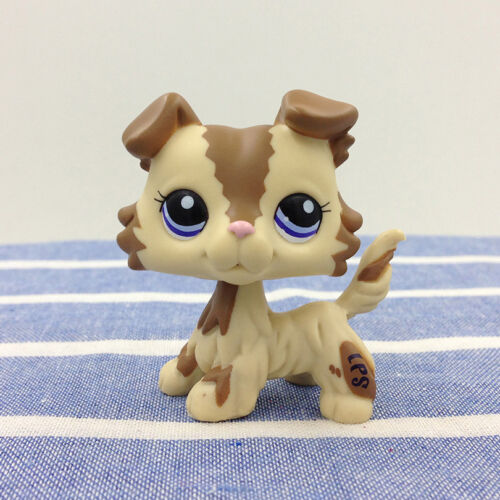 Купить LPS #2210 Brown & Cream Collie Dog Littlest Pet Shop Toys Blue Eyes Puppy Rare
