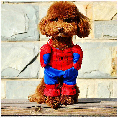 SPIDERMAN COSTUME FOR DOGS OR (CATS) FOR SMALL / MEDIUM DOGS  DCL - Spiderman Costume For Dogs
