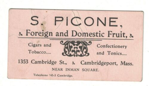 S. Picone Foreign and Domestic Fruit Cambridge MA 1900s Business Card
