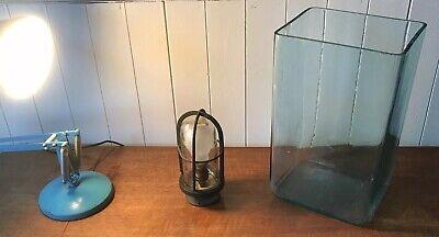 Original Glass Battery Jar. Flower Vase, Restaurant, Candle Holder, Shop Display
