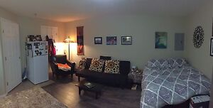 Bachelor suite for rent!