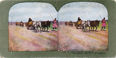 """1905 """"Native Chinese Transport"""" Russo Japanese War Ingersoll Color Stereoview"""