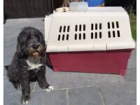 Petmate Furrarri 450 Extra Large Size 36 Long Dog Kennel (Burgundy and Ivory) - REDUCED TO GO!
