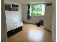 Huge Twin room / double room in a big house, 10min walk to Southfield Station