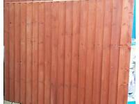 Quality fencing panel 6x5 vertilap
