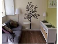 Central St Andrews- One bedroom garden flat For Rent