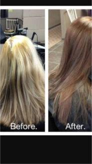 Colour Correction Hair Light to Dark