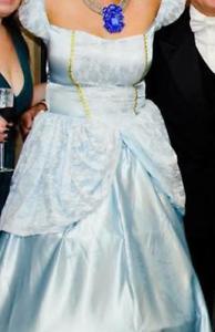 Cinderella costume Algester Brisbane South West Preview