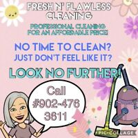Professional cleaning for an affordable price