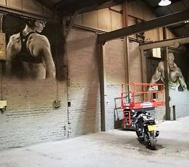Professional Mural artist/Graffiti artist