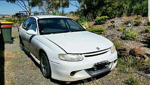 1999 Holden Commodore Angaston Barossa Area Preview