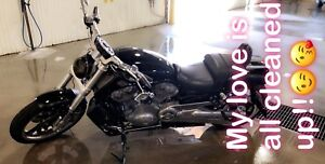 Must sell my Love Harley VROD MUSCLE