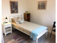 Bright Single Room Full Furnished for a Professional Mate