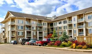 Two Bedroom Two Bathroom Suites Fully Furnished $1950