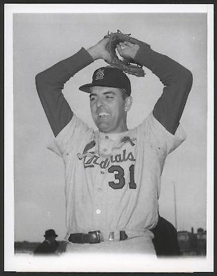 1964 Orig 1St Gen Press Photo   Curt Simmons  Cardinals