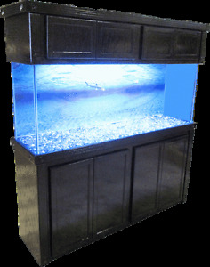 Wanted:- Black Wooden Aquarium/Terrarium **STAND**only.....