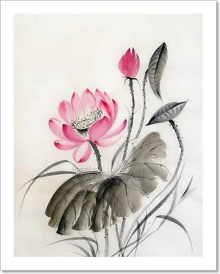 Watercolor Painting Of Lotus Flower Art Print Home Decor Wall Art Poster - C