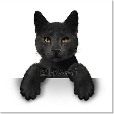 Black Cat Art Print Home Decor Wall Art Poster - - Black Cat Decorations