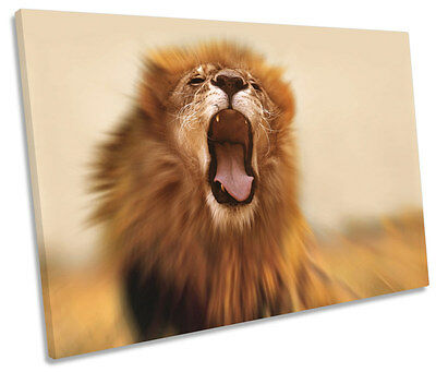 Lion Roar Safari CANVAS WALL ART SINGLE Picture Print